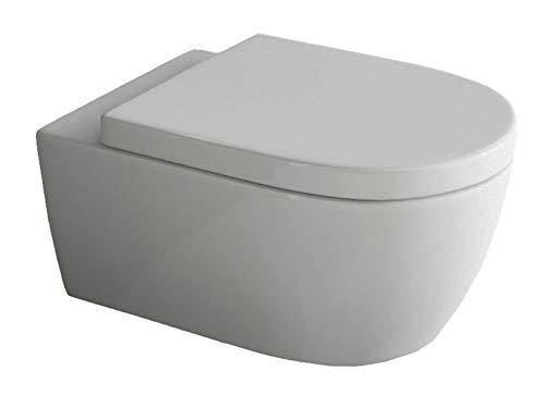 Design Hänge-WC