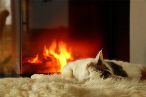 Holz ist bekannt für seine angenehme Wärme.