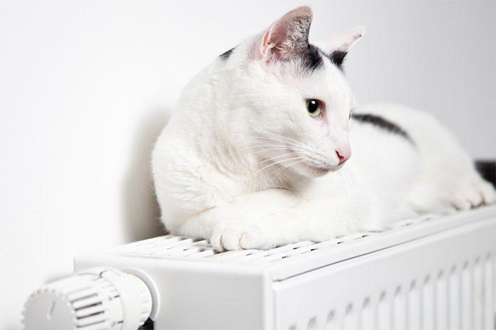 Strahlungswärme wird von Menschen angenehmer empfunden als Konvektionswärme. Daher sollten Sie Wärmeabgabesysteme vergleichen und die Vor- und Nachteile abwägen.