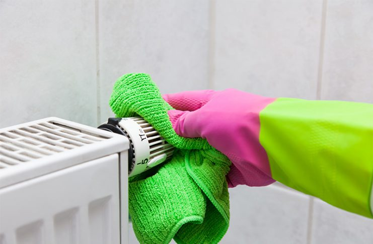 Saubere Heizkörper sorgen für ein besseres Raumklima und helfen beim Sparen von Energie.