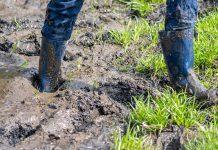 Darum den Garten entwässern: Stehengebliebenes Wasser behindert die Gartengestaltung und kann unter Umständen sogar zu Schäden am Haus führen.