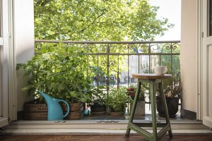 Um sich am Balkon vor neugieren Blicken zu schützen können statt Matten aus Kunststoff oder Bambus auch einfach Pflanzen auftestellt werden.