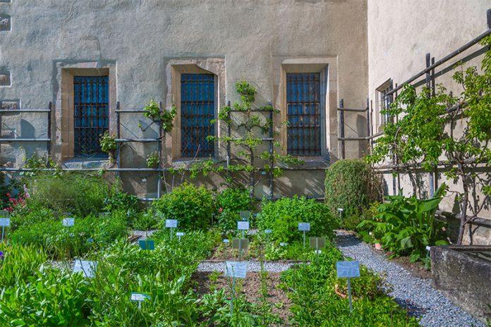 Bei der Kräutergarten-Gestaltung gibt es unzählige Möglichkeiten.