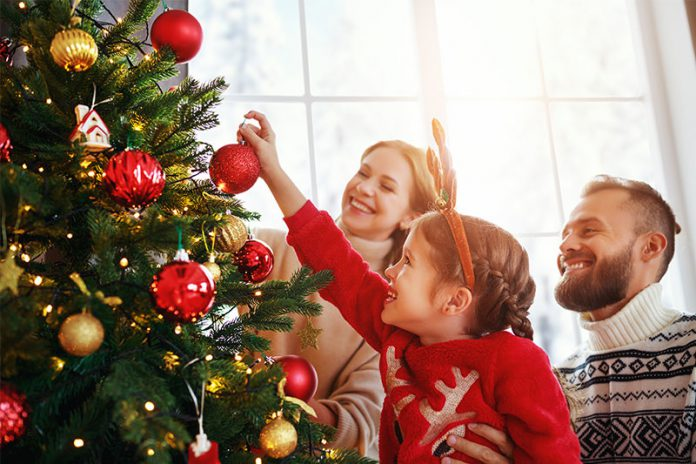 Für viele entscheiden beim Weihnachtsbaum-Kauf nicht nur Optik und Preis. Auch der Ökofaktor spielt eine wichtige Rolle.